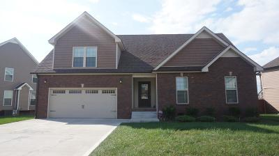 Single Family Home For Sale: 1752 Spring Haven Dr