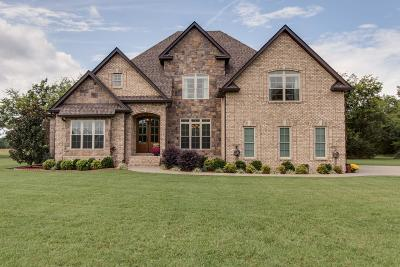 Single Family Home For Sale: 1030 Rock Springs Midland Rd