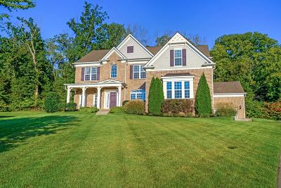 Brentwood TN Single Family Home Under Contract - Showing: $665,000