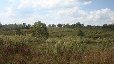 Lawrenceburg Residential Lots & Land For Sale: Christopher Ln
