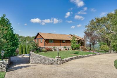 Columbia Single Family Home For Sale: 112 Brighton Ct