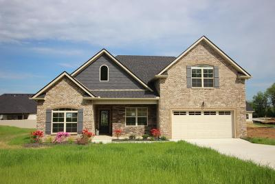Smyrna Single Family Home For Sale: 5305 Patience Dr, Lot 58