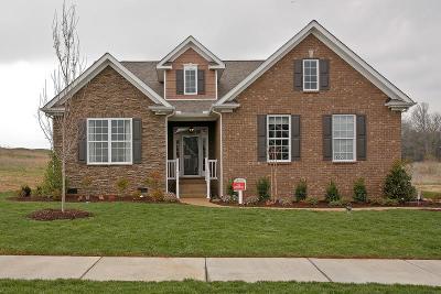Mount Juliet Single Family Home For Sale: 5178 Giardino Drive Lot #100