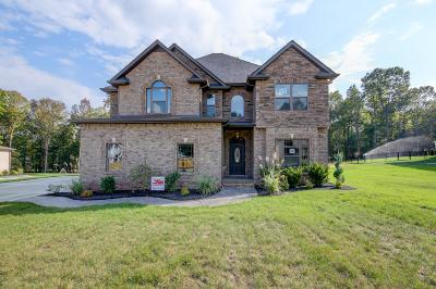 Clarksville Single Family Home For Sale: 1120 Reda Dr