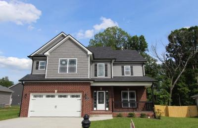 Clarksville Single Family Home For Sale: 35 Towes Lane