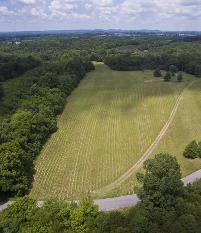 Spring Hill  Residential Lots & Land For Sale: Joe Peay Cemetery Road