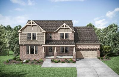 Hendersonville Single Family Home For Sale: 157 Ashington Circle Lot 124