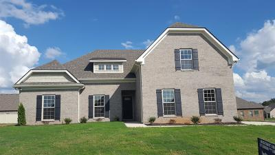 Murfreesboro Single Family Home For Sale: 2415 Tin Cup Dr - #91