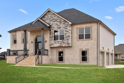 Clarksville Single Family Home For Sale: 193 Wellington Fields