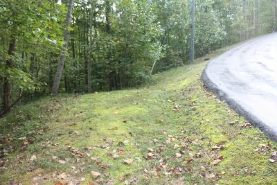 Williamson County Residential Lots & Land For Sale: 3715 Ravens Trace Ln