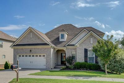 Spring Hill Single Family Home Under Contract - Showing: 1061 Achiever Cir