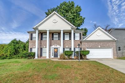 Hendersonville Single Family Home For Sale: 206 Vintage Cir