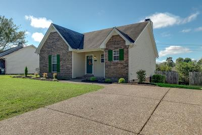 Goodlettsville Single Family Home For Sale: 4060 Turners Bnd