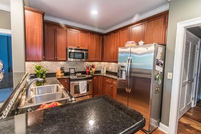 Cheatham County Condo/Townhouse For Sale: 400 Warioto Way Apt 405 #405