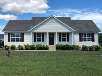 Christiana Single Family Home For Sale: 417 Dorchester Dr