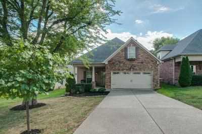 Nashville Single Family Home For Sale: 2243 A Castleman Dr