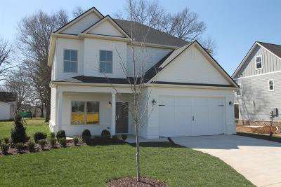 Marshall County Single Family Home For Sale: 101 Maple Street L-1