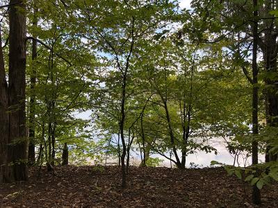 Residential Lots & Land Under Contract - Not Showing: 14 Beechtree Cir