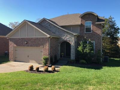 Mount Juliet Single Family Home For Sale: 8007 Timber Cove Dr