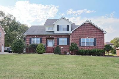 Smyrna Single Family Home For Sale: 359 Saint Francis Ave