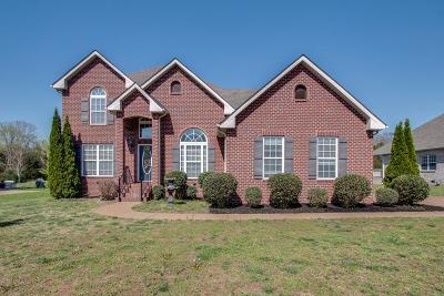 Mount Juliet Single Family Home For Sale: 158 Seven Springs Dr