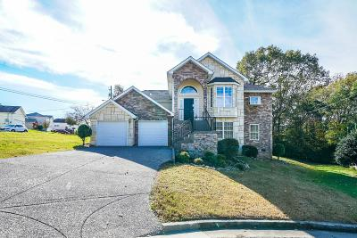 Antioch Single Family Home For Sale: 2317 Green Trails Ct