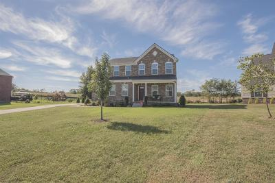 Single Family Home For Sale: 423 River Downs Blvd