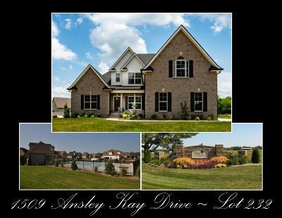 Rutherford County Single Family Home For Sale: 1509 Ansley Kay Drive - 232