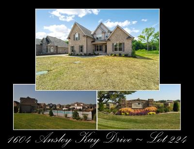Christiana Single Family Home Under Contract - Showing: 1604 Ansley Kay Drive - 224