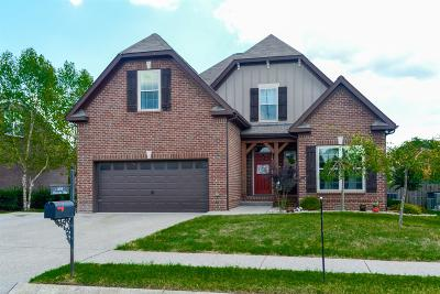Spring Hill Single Family Home For Sale: 3015 Sommette Dr.