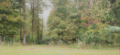 Lawrenceburg Residential Lots & Land For Sale: Hayes Rd
