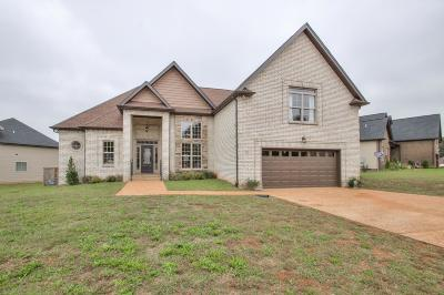 Sumner County Single Family Home For Sale: 205 Sheffield Dr