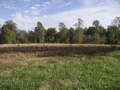 Macon County Residential Lots & Land For Sale