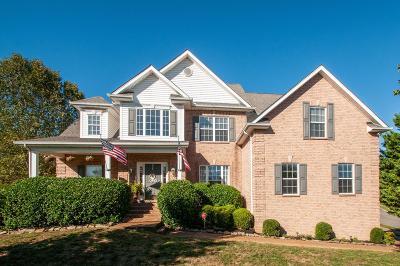 Hendersonville Single Family Home For Sale: 101 Castle Ct