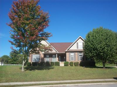 Clarksville Single Family Home For Sale: 428 Herndon Ct