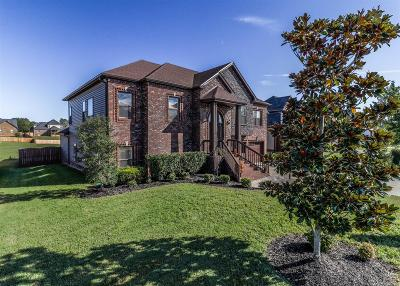 Clarksville Single Family Home For Sale: 1513 Green Grove Way