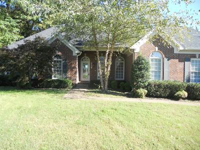Mount Juliet Single Family Home For Sale: 2106 Donna Kaye Ct