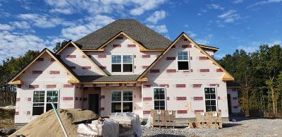 Smyrna Single Family Home Under Contract - Not Showing: 805 Sadie Ann Ct (Lot 31)