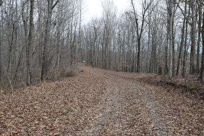 Williamson County Residential Lots & Land For Sale: 1037 Fairview Blvd
