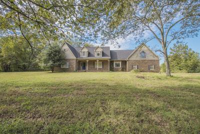 Single Family Home For Sale: 234 Peebles Dr