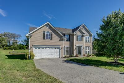 Spring Hill Single Family Home For Sale: 5007 Guardian Ct