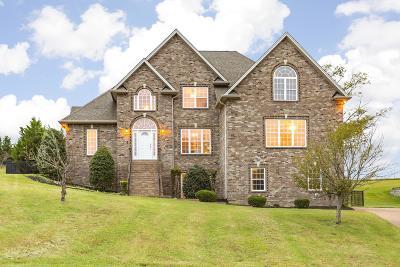 Mount Juliet Single Family Home For Sale: 910 Noel Drive