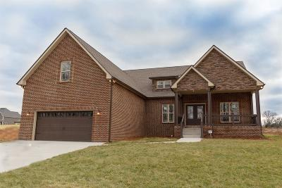 Clarksville Single Family Home For Sale: 2842 Chatfield Drive Lot 13