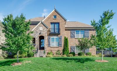 Hendersonville Single Family Home For Sale: 1009 Avery Trace Cir