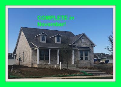 Hendersonville Single Family Home For Sale: 1569 Drakes Creek Road #146