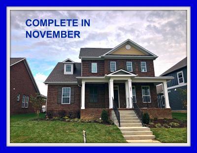 Hendersonville Single Family Home For Sale: 297 Tanglewood Lane #242