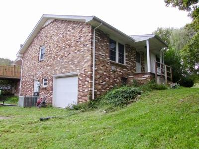 Clarksville Single Family Home For Sale: 1380 Old Dover Ct