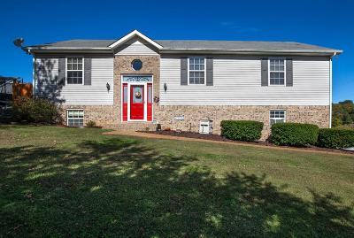 Spring Hill Single Family Home For Sale: 2137 Lee Rd