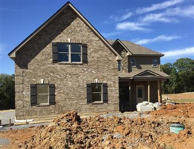 Smyrna Single Family Home For Sale: 907 Paislee Raine Drive