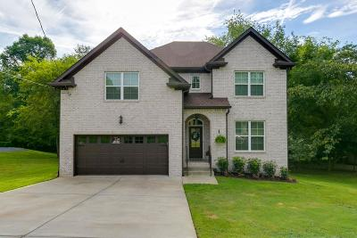 Hendersonville Single Family Home For Sale: 89 Valley Brook Dr